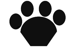 Paws on Web APIs