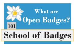 101 What are Open Badges?