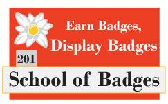 201 Earn Badges, Display Badges