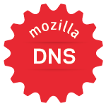 DNS Basic Badge
